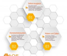 SAOS-Wabenorganisation