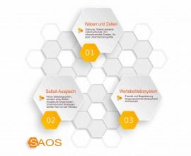SAOS – Organisation