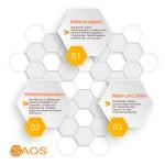 SAOS-Kernstrategien der agilen (selbst-adaptiven) Wabenorganisation
