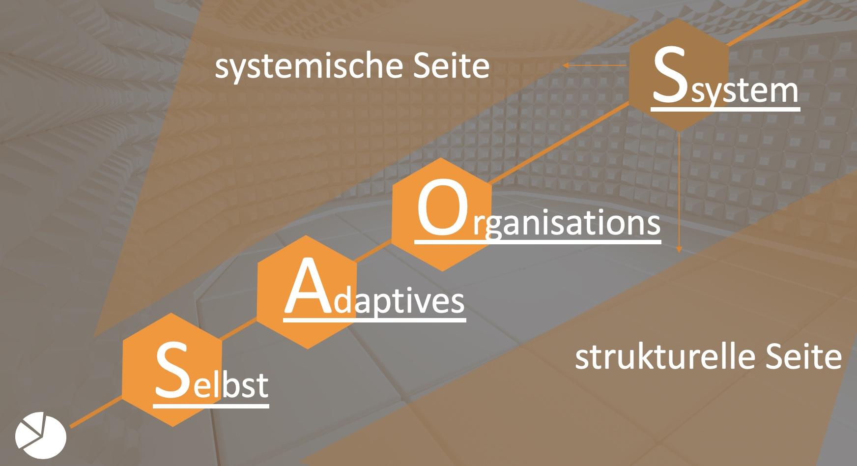 Systeme und systemisch