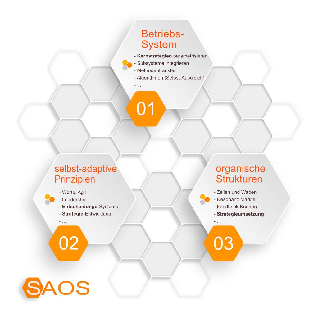 Die 3 SAOS-Ebenen